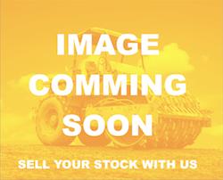 no-image-135230